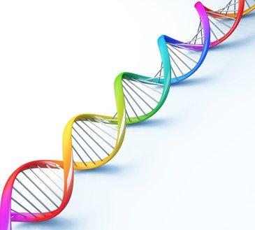 El gran descubrimiento, la Fragmentación de ADN Espermático y cómo tratarlo