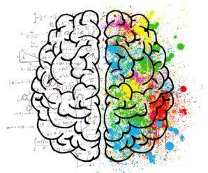 Ondas Alfa: el mejor estado cerebral.